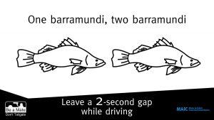 One barramundi two barramundi. Leave a 2-second gap while driving