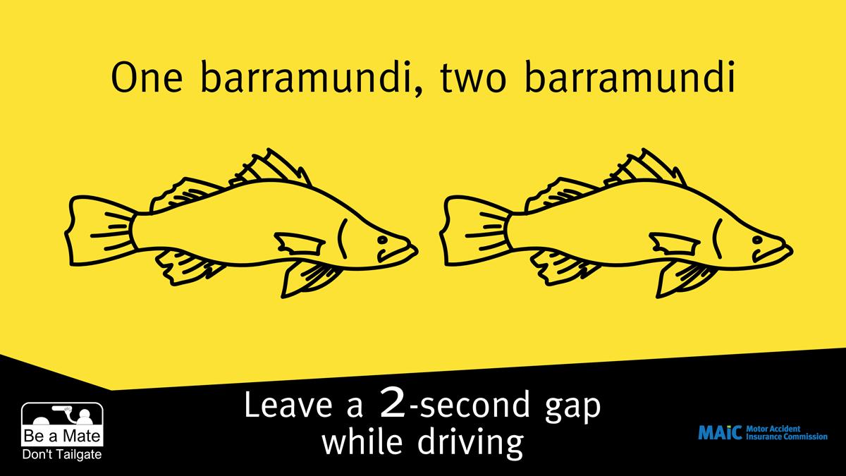 One barramundi, two barramundi